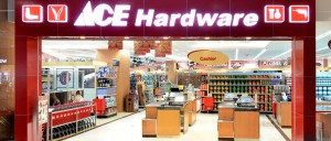 edi transactions ace hardware