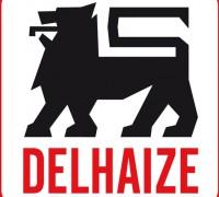 Delhaze EDI