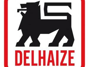 Delhaize America EDI