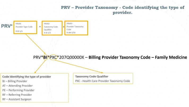 PRV Taxonomy Codes Segment